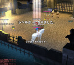 2008-07-25_15-41-11.jpg